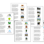 Ancient History Review Cards by Sprouting Tadpoles