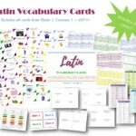 Latin Vocabulary Cards Lesson 1 - 42
